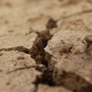sucha, spierzchnięta ziemia, której brakuje wody