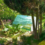 ,alt> ogród
